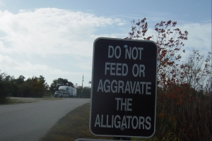 Do not feed the alligatorrs