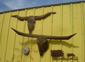 More Texas longhorns