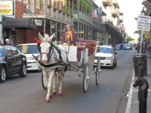 Horse and buggy will take you on a tour of the French Quarter