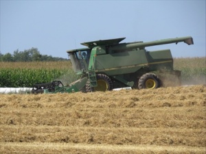 A combine at work.