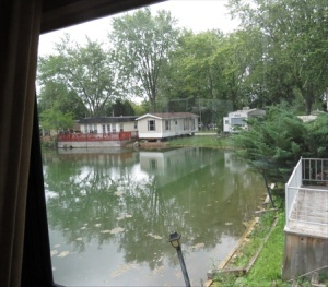 View of the pond from our rear window