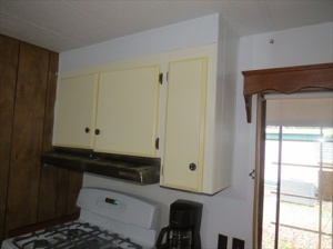 But the range hood has to go.