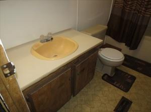 Ugly bathroom 2