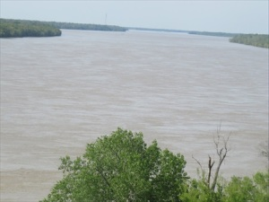 View of the Mississippi River from the bluff at Rosalees.
