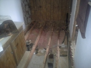 Toilet and tub and floors- gone
